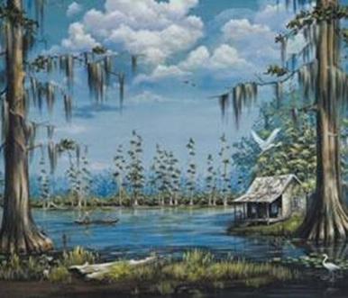 Le bayou Louisiane